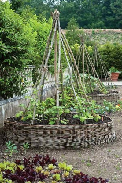 10 ideas about how you have an awesome garden with cheap things